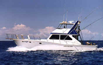 Magic sportfishing deep sea fishing deep sea fishing hawaii for Magic sport fishing